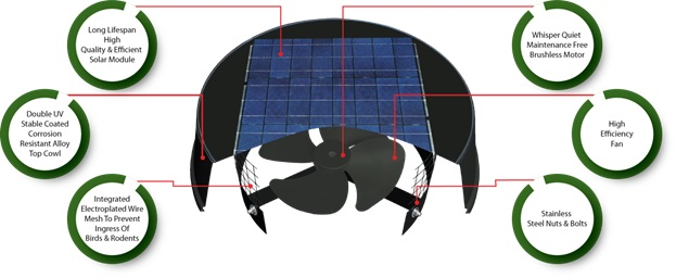 Section view of solar ventilator